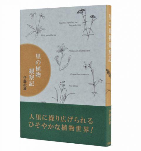 里の植物観察記
